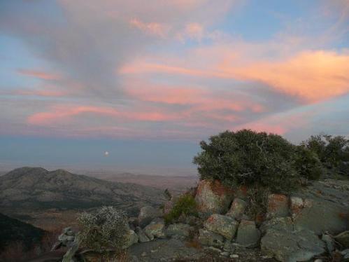 Goshute Peak wilderness