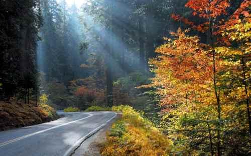 Southern Yosemite road