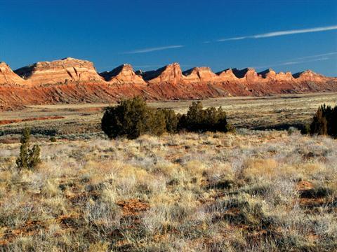 Comb Ridge, Utah